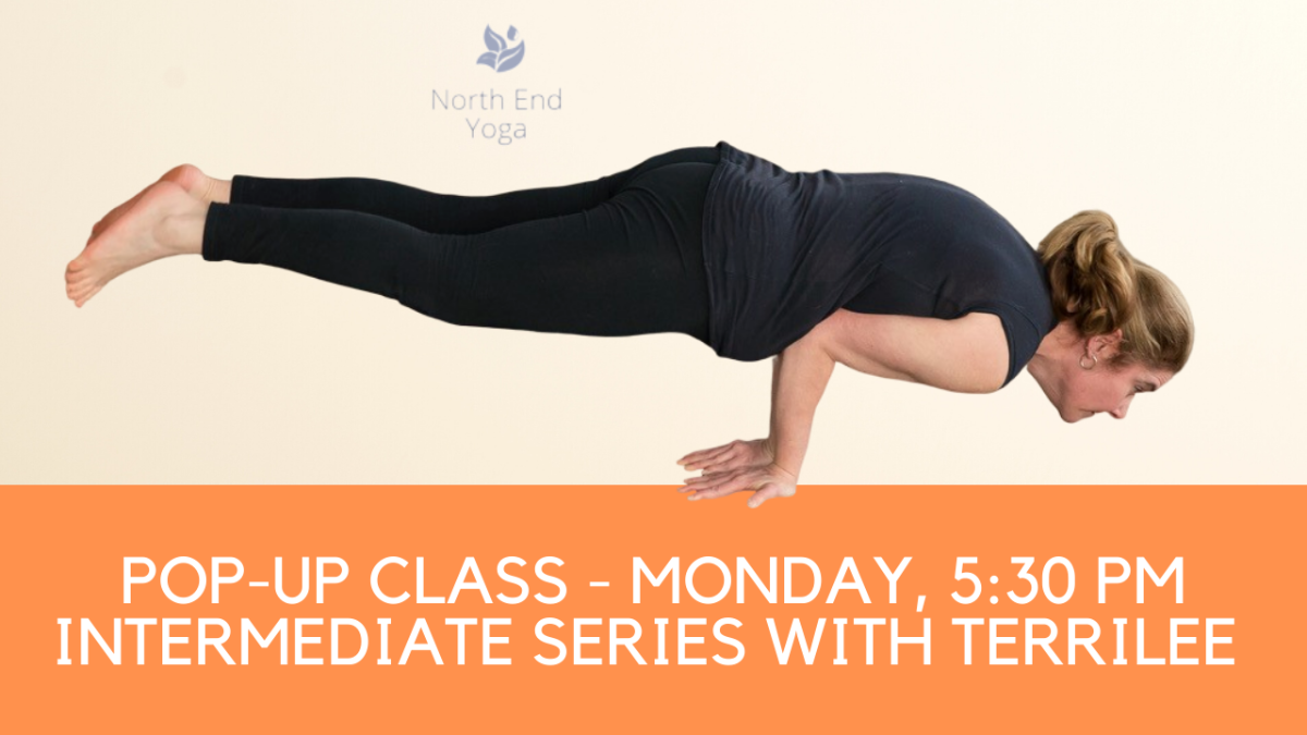 virtual Yoga with Terrilee